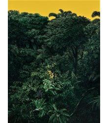 Edição - Natureza Poetante V