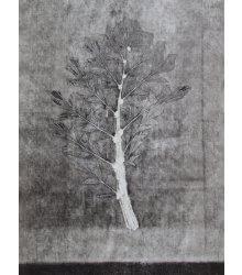 Caryota I (3), da série Botânica